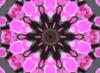 net_skirt userpic