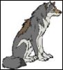 wolvesothenight