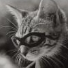 Cat - Masked Avenger