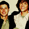 Jensen and Jared sittin' in a tree, K-I-S-S-I-N-G