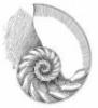 spiralshell
