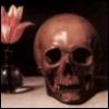 Skull -- Still Life