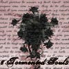 6tormentedsoul9 [userpic]