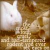 Holy grail killer bunny