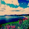 Yousra: landscape