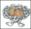 chainedmunchkin userpic
