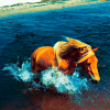 blackwildhorses userpic
