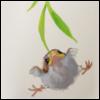 pyreflie userpic