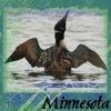 HellZiggy: Minnesota