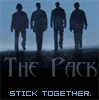 Jacob Black: the pack
