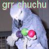 ChuChu Grr