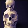 Giorgia: skulls