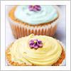 stock || cupcakes