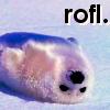 Beta: Rofl