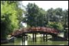 Roberta: Bridge