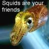 SquidsAreYourFriends