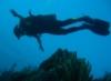 Me diving in Bonaire May 06