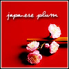 japanese plum by magick_icons