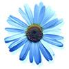 mimium userpic