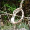lapizlasuli: knot