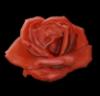 opalburn userpic