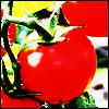 nonbiriya userpic