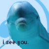 orcaspitt userpic