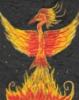 dudi killimengri: Phoenix