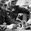 Nazi&Kitten