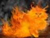 thecats_hero userpic