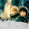 LotR: friendship