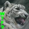 Snow Leopard WTF