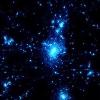 spock_the_llama userpic
