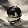au_mutations: глаз