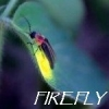 firefly_flash userpic