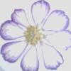 lorelailizzy userpic