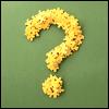 Вопрос из цветов