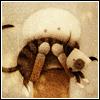 capricce userpic