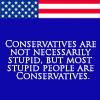 Liberal 3 (Stupid)