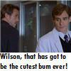 [House] WilsonBum.jpg