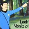Look! Monkeys!
