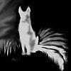 tai_fox_silver userpic