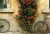 florence door