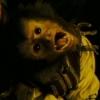 Monkey 2.0