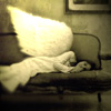 angel on couch by