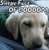 doggy_dork userpic