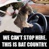 random bat country