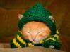 sweater kitty