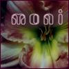 corollunum userpic