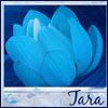 bluetara2020 userpic